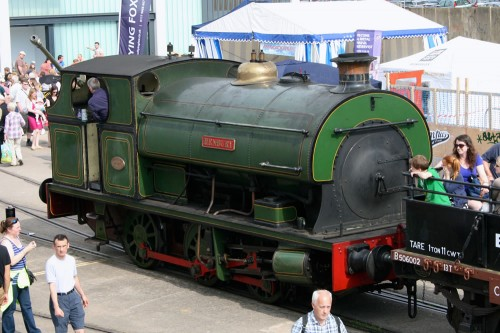 Harbour Steam Railway